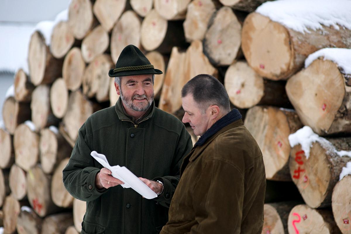 Holz-fair-kaufen-Beratung-in-Ihrer-Naehe