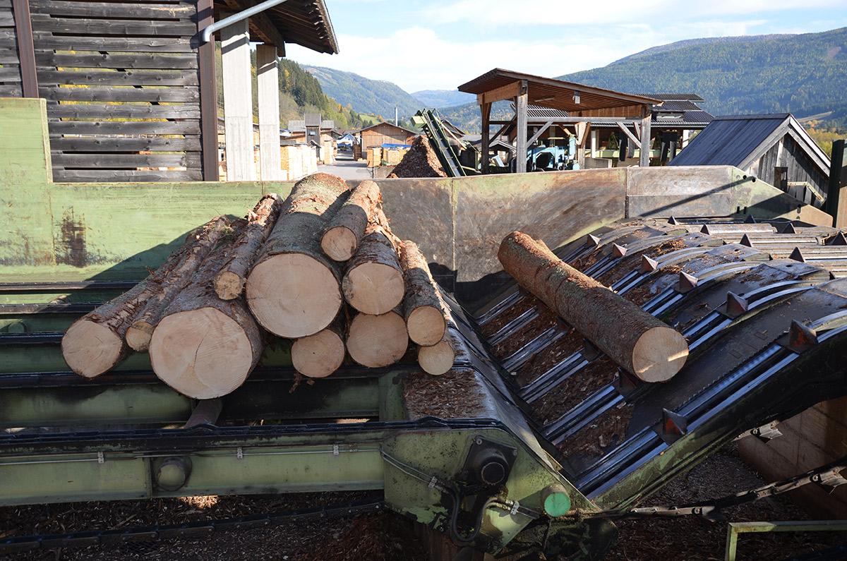Holz-fair-kaufen-Uebernahme-2(c)-FHP_Anna-Schreiner_DSC_0130
