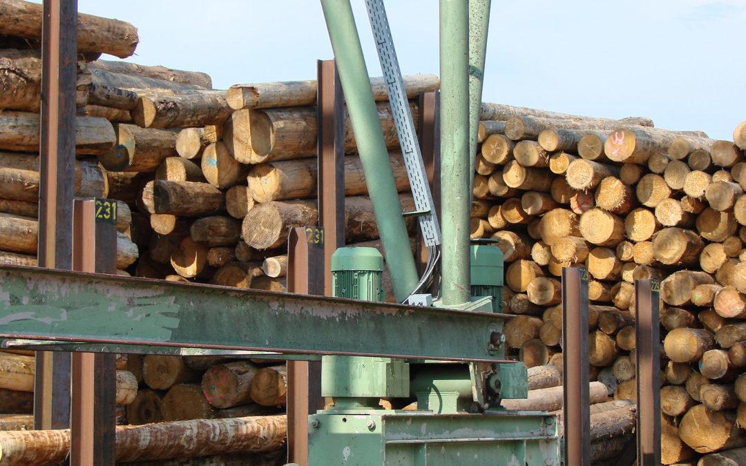 Holzmarktsituation im August