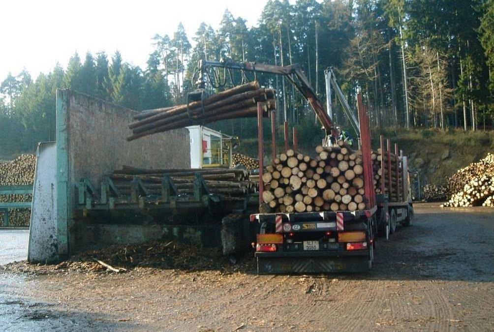 Der Holzmarktbericht für Mai 2020 ist da!